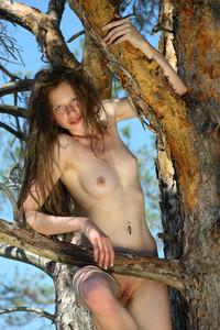 Nicole K - Teilora [HQ Photoset] (2015/Met-Art.com/506.8 MB)