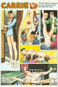 Carrie Carton Girl Strip Complete 19720-1988