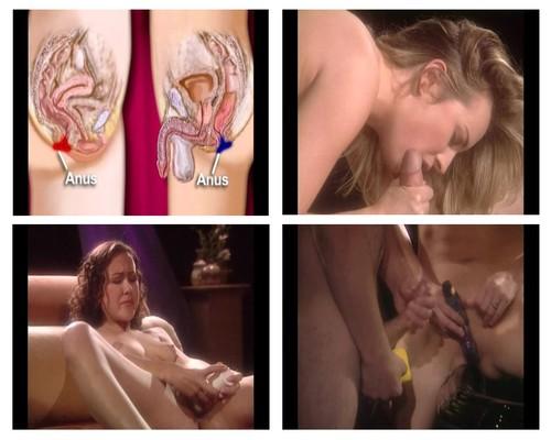 sex instructional movies